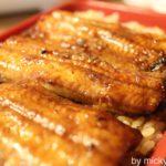 うなくり5(北砂):砂町銀座で安くてうまいうなぎを♪うな丼も超おすすめ!